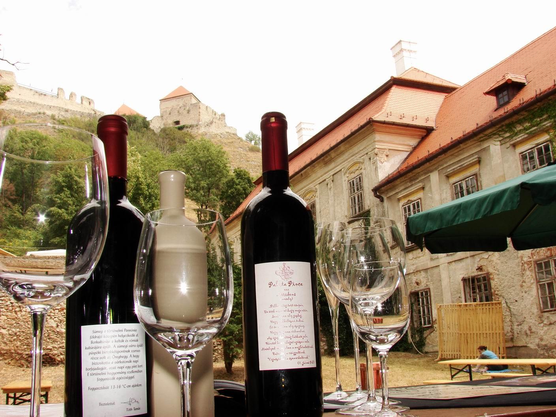 Francia vendégek 2007 (20)